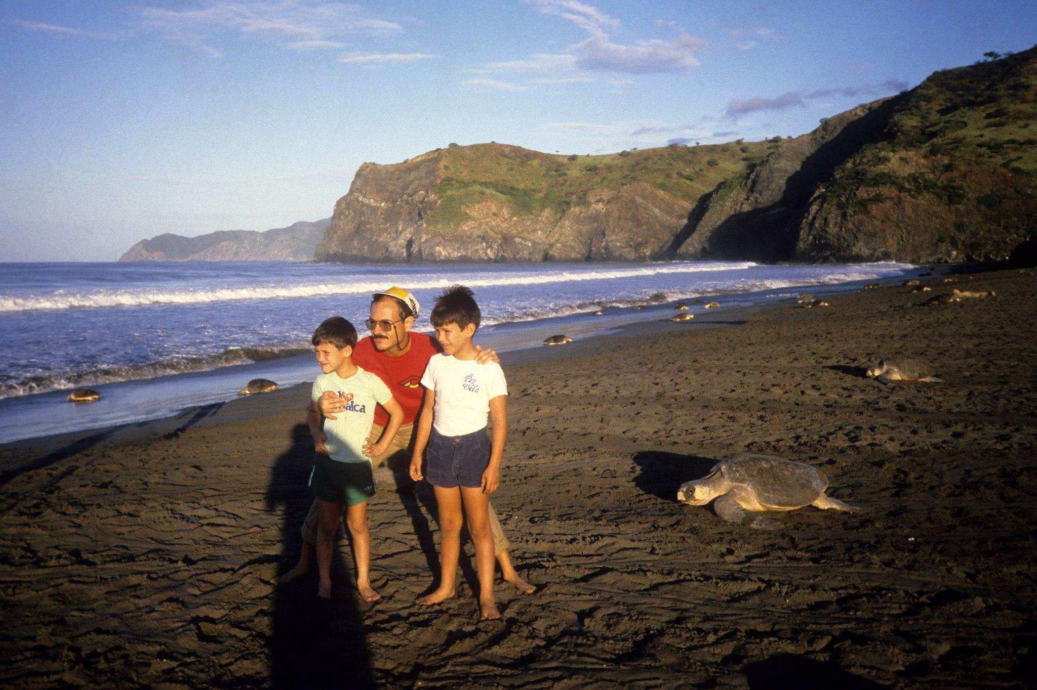 Playa Naranjo, Santa Rosa National Park, 1987. Arribada, hundreds of turtles nesting in sync.