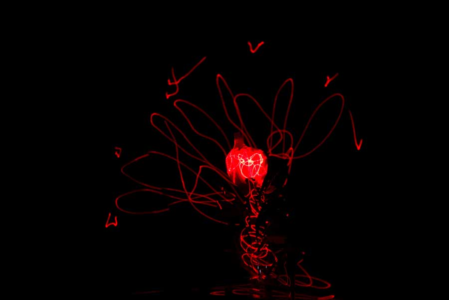 Light Painted Flower © Naida Ginnane 2018, Nikon D800, 24-70mm lens.   Probably not painting so much as scribbling with a laser. This one illustrates the difference between the intensity of the torch and the laser. Its not possible to gently build up layers of light with the laser because its too bright, rather the finely directed point allows you to create lines, points etc.