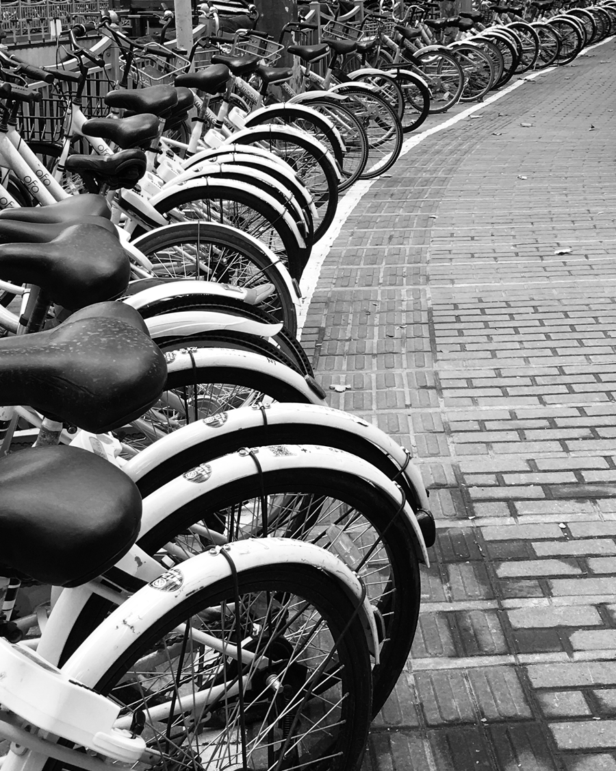 Bikes © Naida Ginnane 2018,iPhone 6,  There are no straight lines in this image but the repetition of the bike shape has created a beautiful curved line, leading the eye from the foreground to the background.