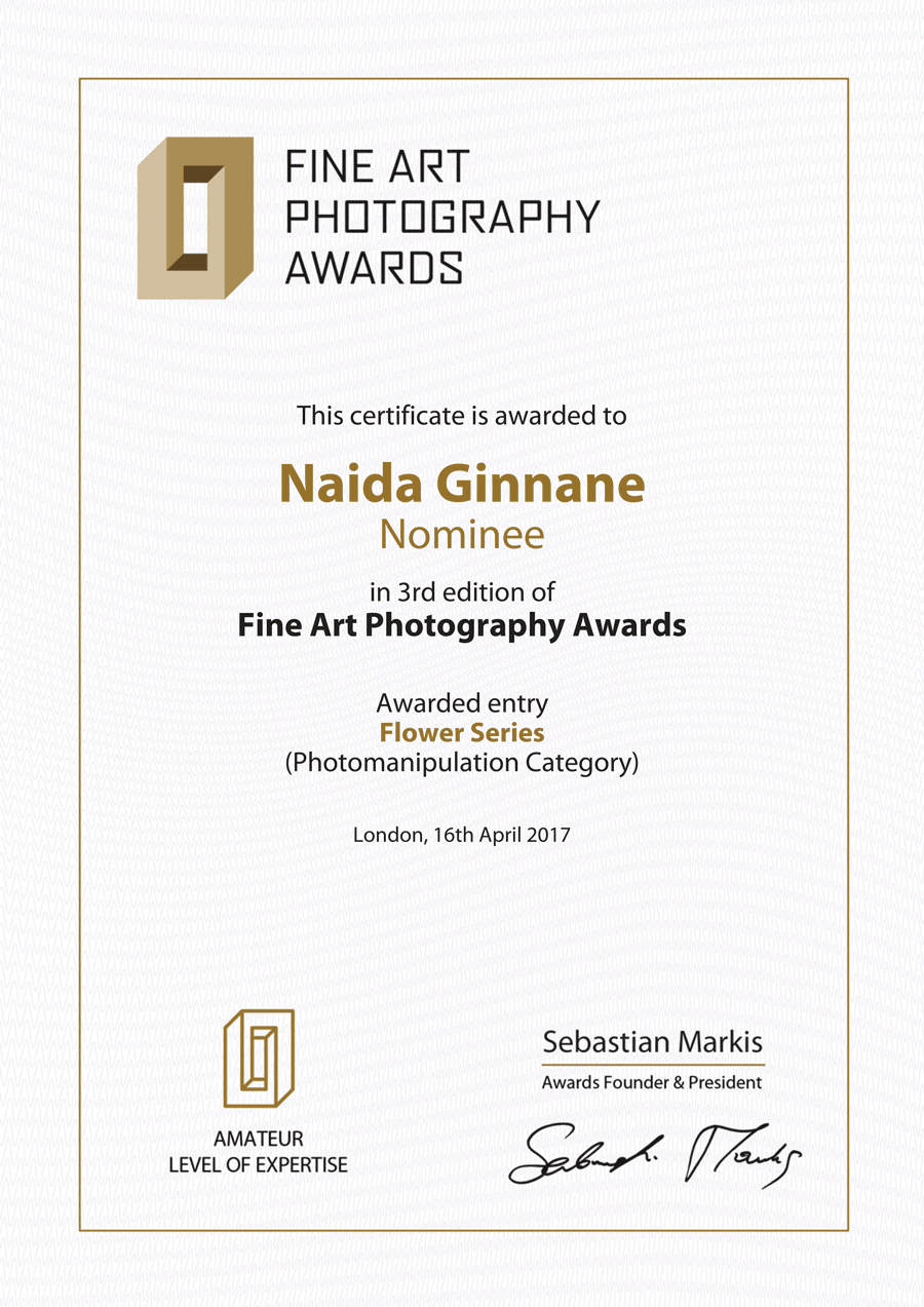 FAPA_3rd_Edition_Certificate-(1).png
