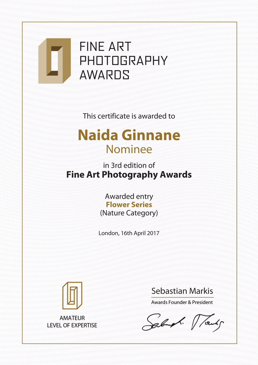 FAPA_3rd_Edition_Certificate.png