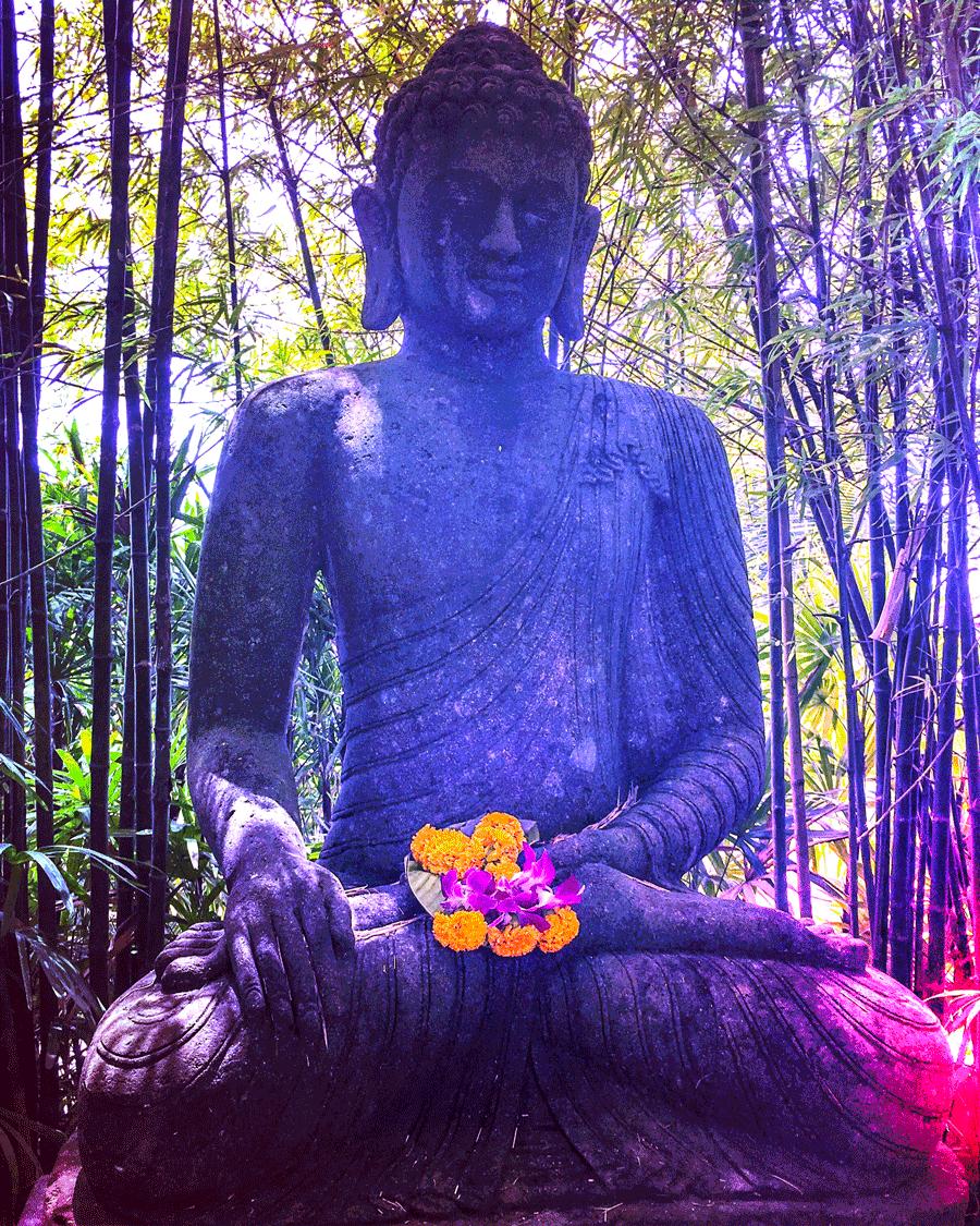 'Buddah - Mextures' © Naida Ginnane 2017, Mextures Edits; Original > Grunge Filter > Light Leak > brightness/Contrast