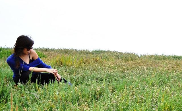 purplegrass1.jpg