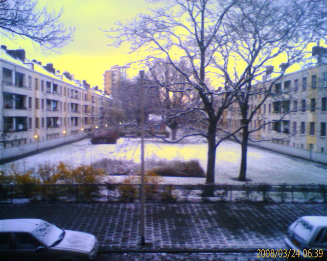The morning view outside my window a couple days after we arrived in Rotterdam/Europe for the 1st time.
