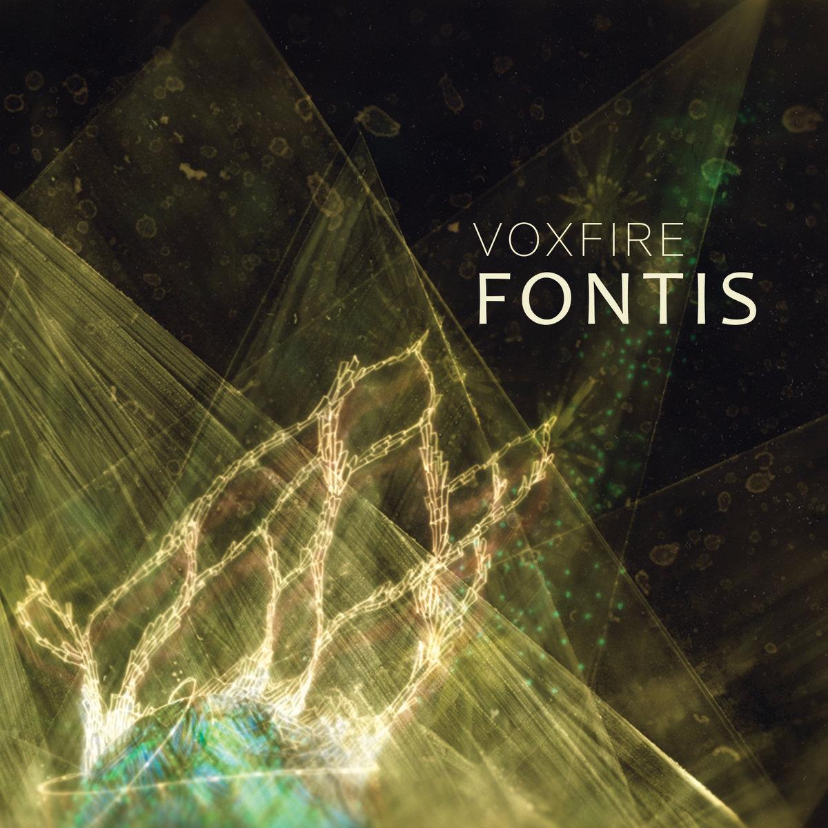 Voxfire // Fontis