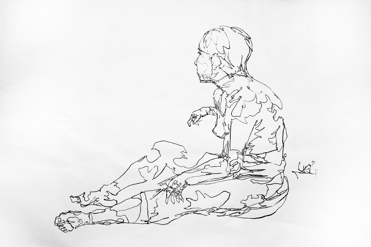 Continuous Line Contour Drawing, 2011