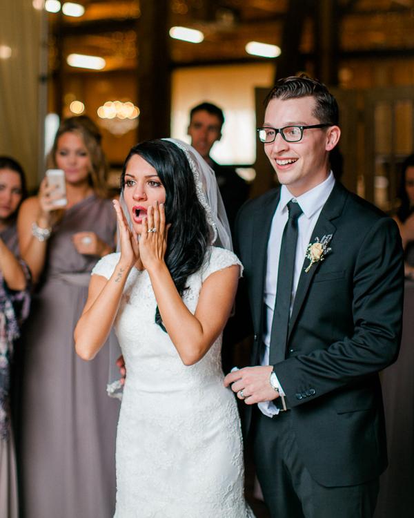 1 dayton_columbus_cincinnati and destination fine art wedding photography_lisa & austin akron ohio wedding_brookside farm wedding5935
