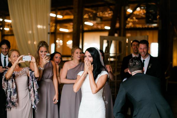 1 dayton_columbus_cincinnati and destination fine art wedding photography_lisa & austin akron ohio wedding_brookside farm wedding5436