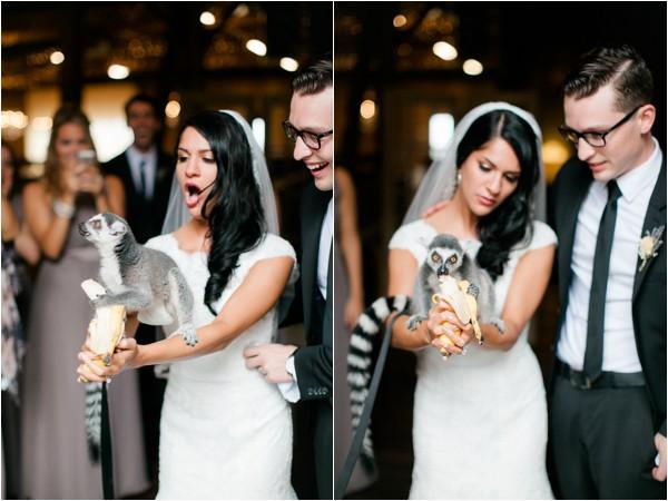 1 dayton_columbus_cincinnati and destination fine art wedding photography_lisa & austin akron ohio wedding_brookside farm wedding50700