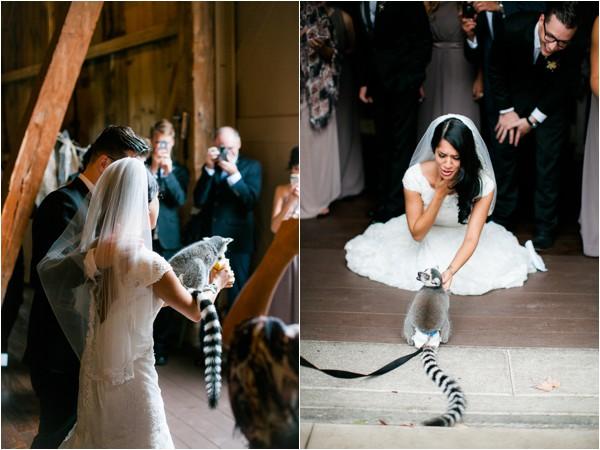 1 dayton_columbus_cincinnati and destination fine art wedding photography_lisa & austin akron ohio wedding_brookside farm wedding55647