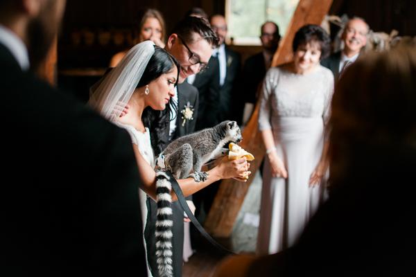 1 dayton_columbus_cincinnati and destination fine art wedding photography_lisa & austin akron ohio wedding_brookside farm wedding59475