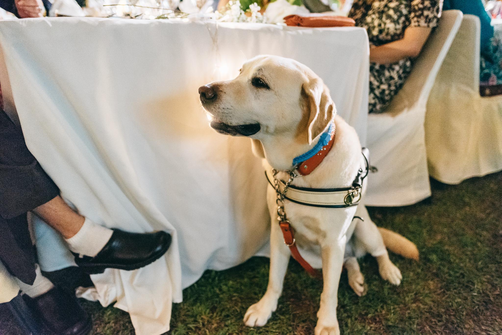 Lionel & Karen Wedding Day Highlights (resized for sharing) - 178.jpg