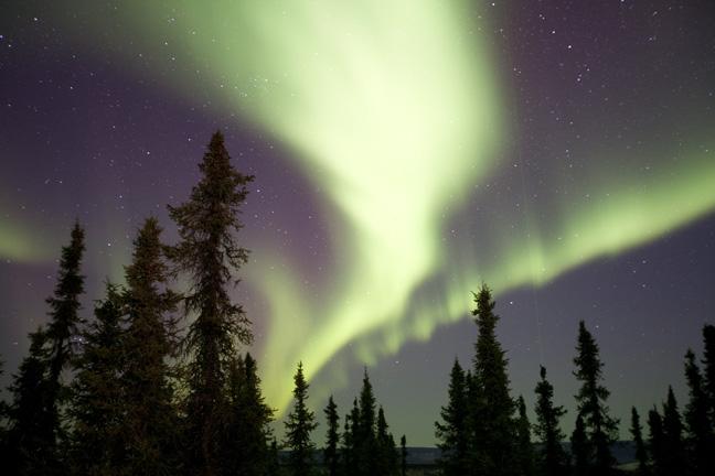 Alaska Aurora Northern Light Photo Tour