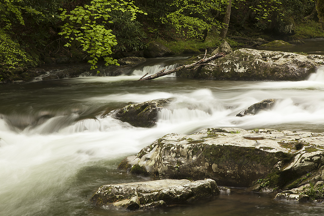 Great Smoky Mountain Photo Tours and Worshops