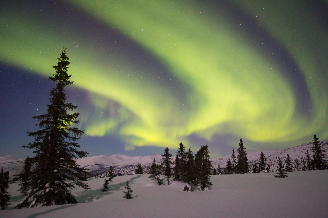 Alaska Northern Lights Aurora Photo Tours And Workshops Slonina Nature Photography
