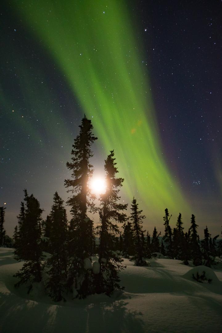 Alaska_Aurora_Northern_lights_Photo_Tour_Workshop-7033.JPG