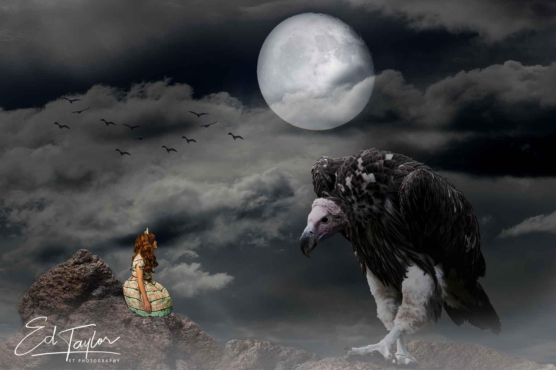 vultureTweet.jpg