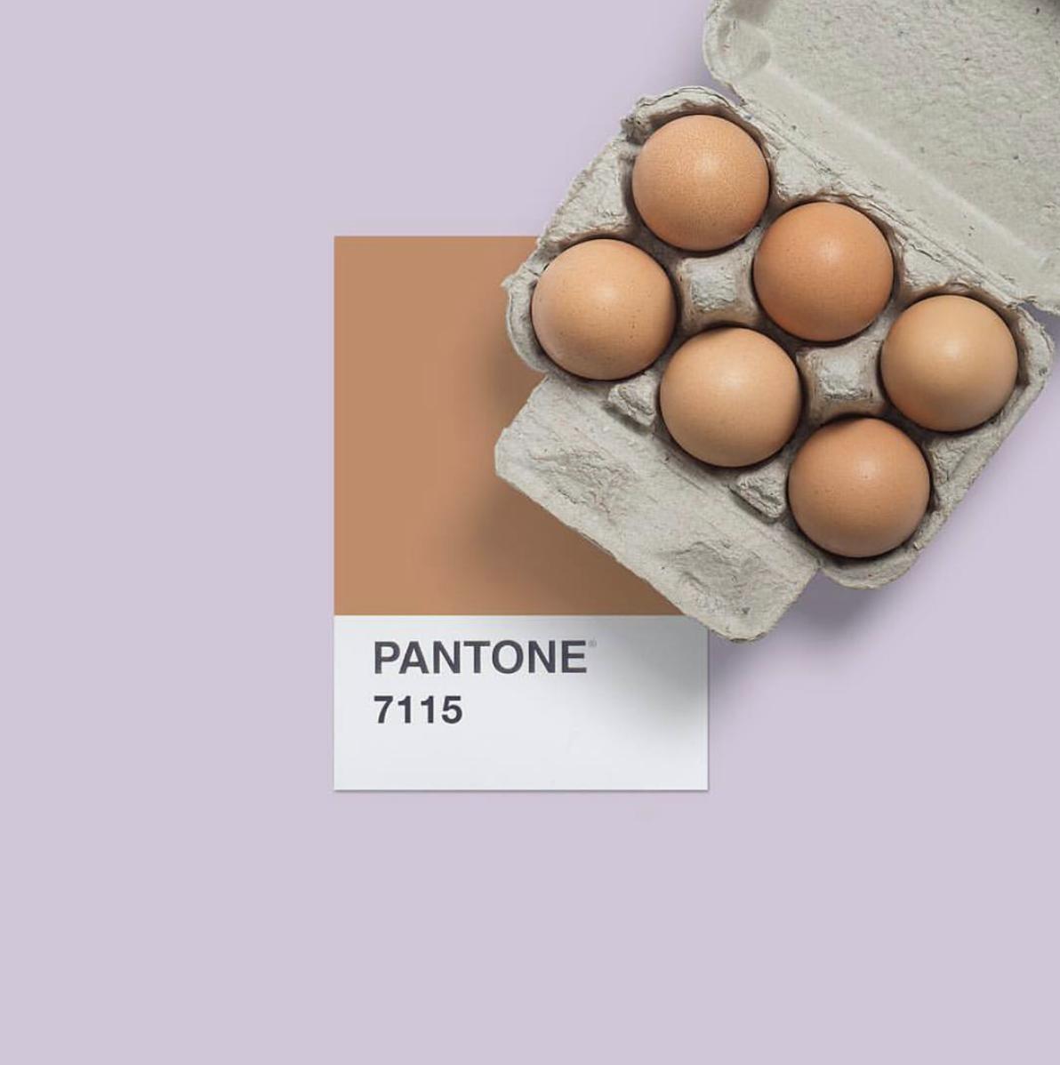 pantone_eggs.png