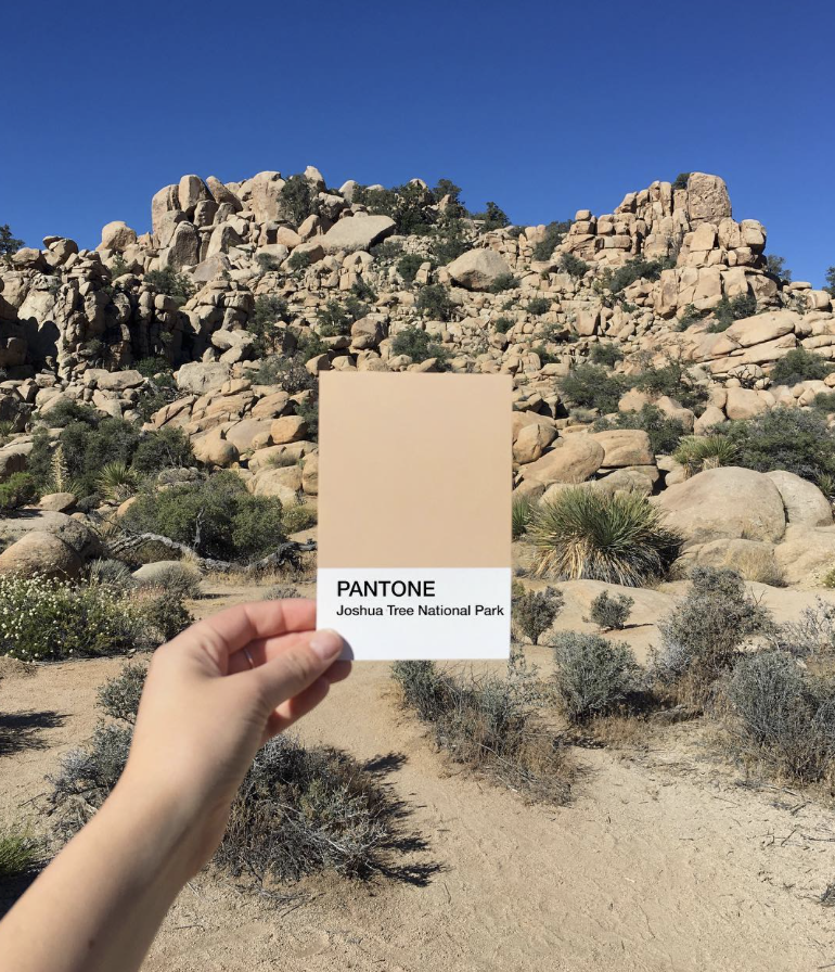 Joshua Tree National Park Pantone.png