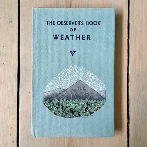 cute British book on weather