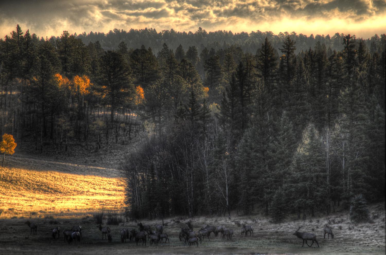 sunrise in the valley.jpg