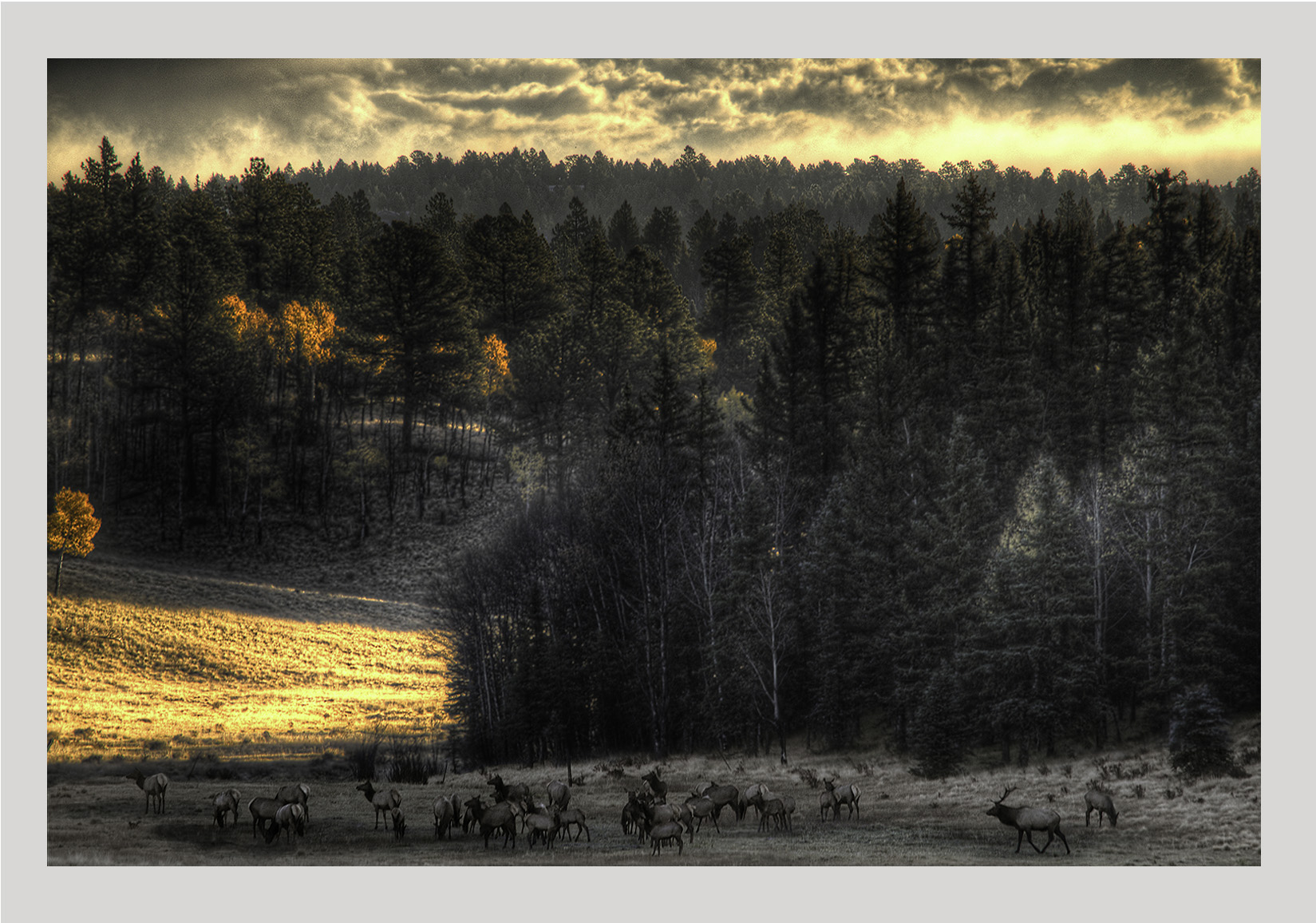 sunrise in the valley 16x19 giclee example.jpg