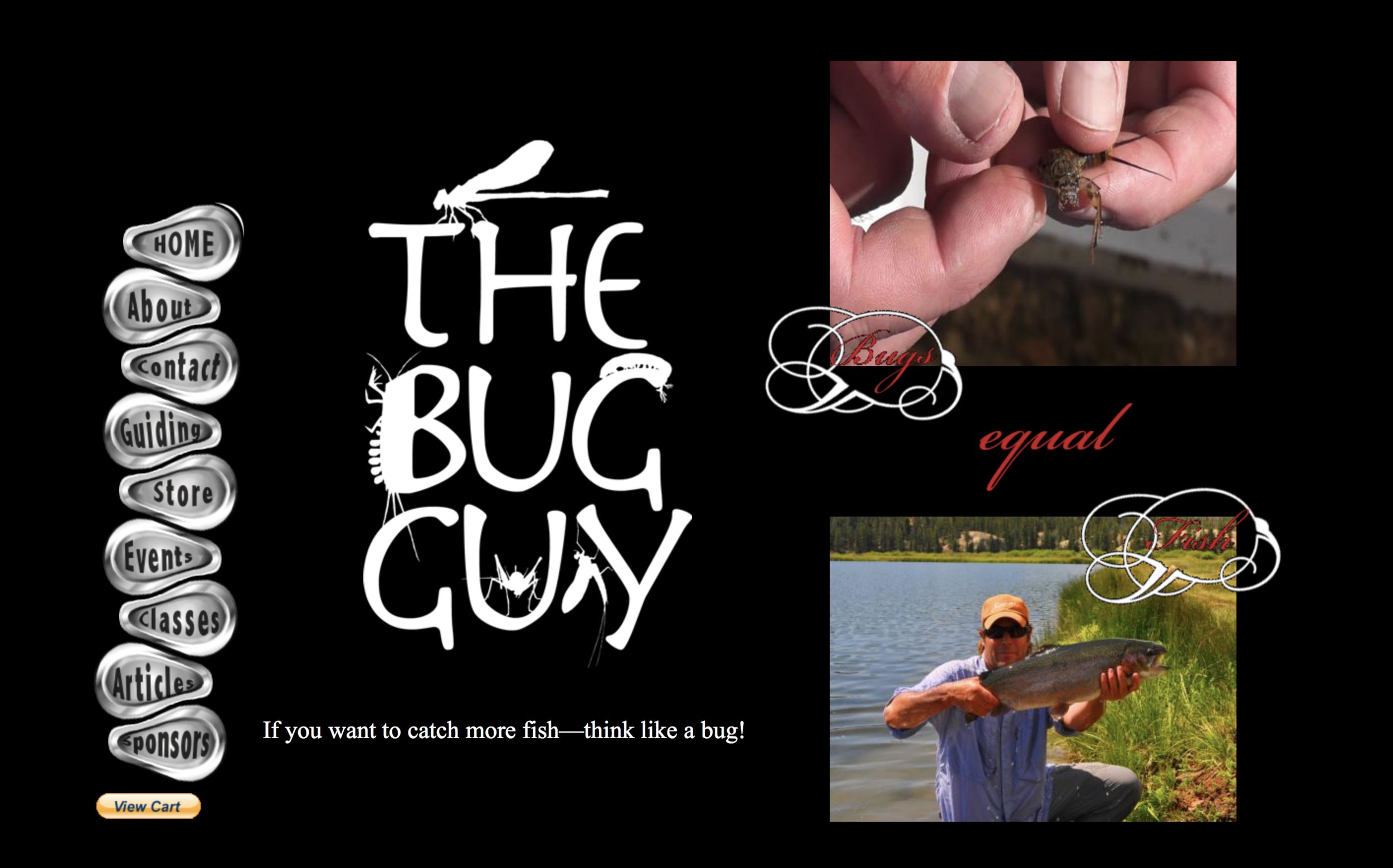 bug guy web site .png