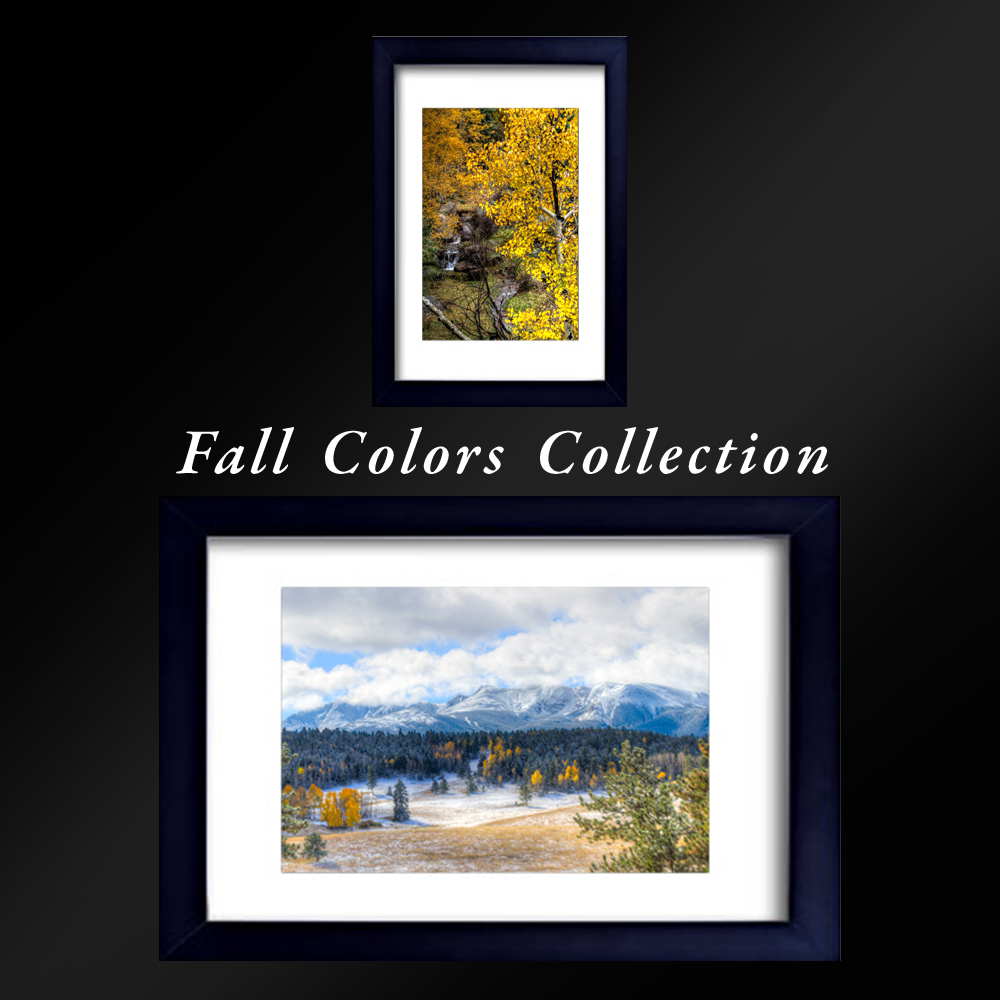 Fall colors collection