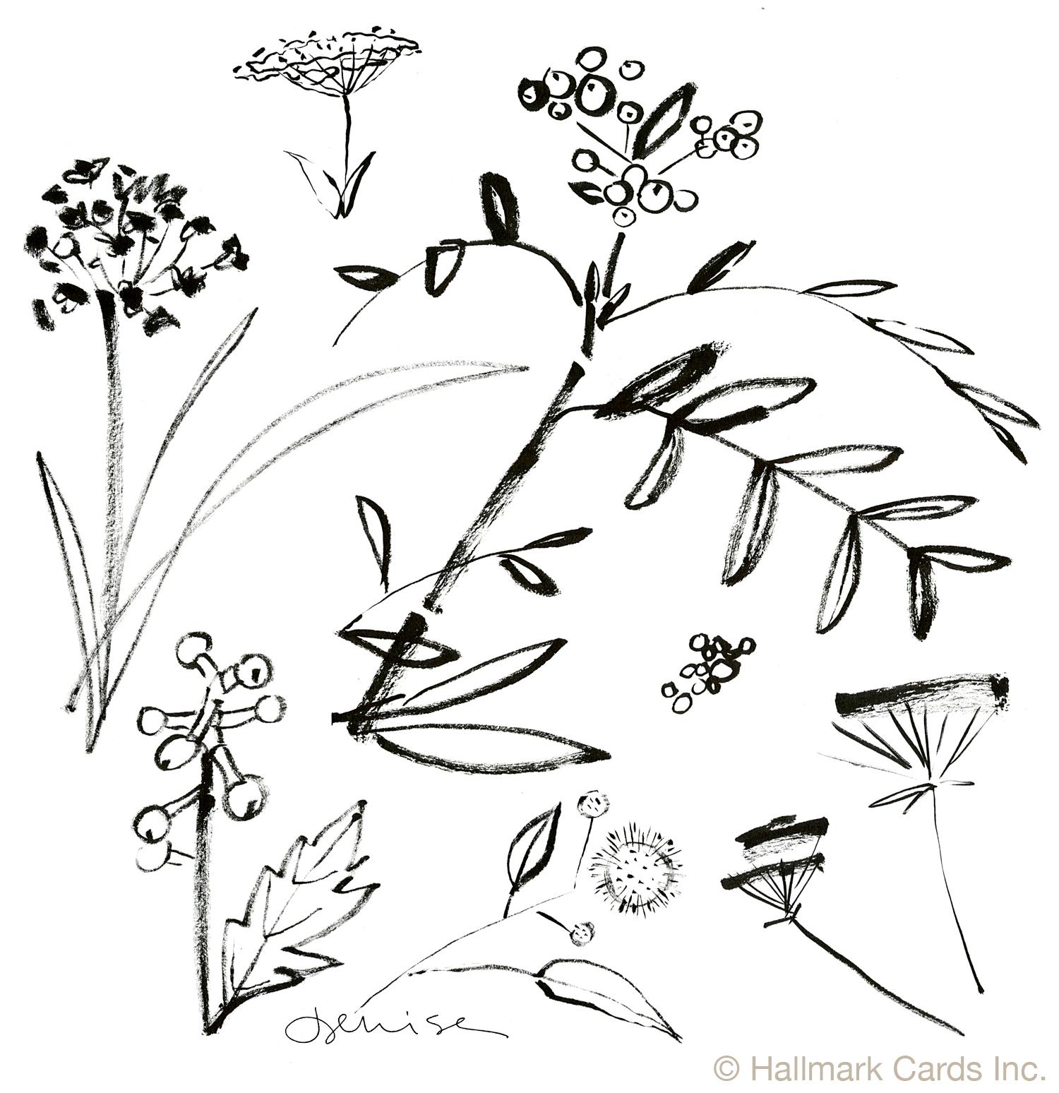Flowers Seedhead Brushwork.jpg