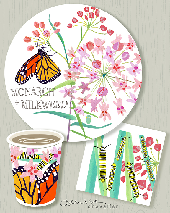 Denise_Chevalier_MonarchMilkweed_3B_Week5rev.jpg