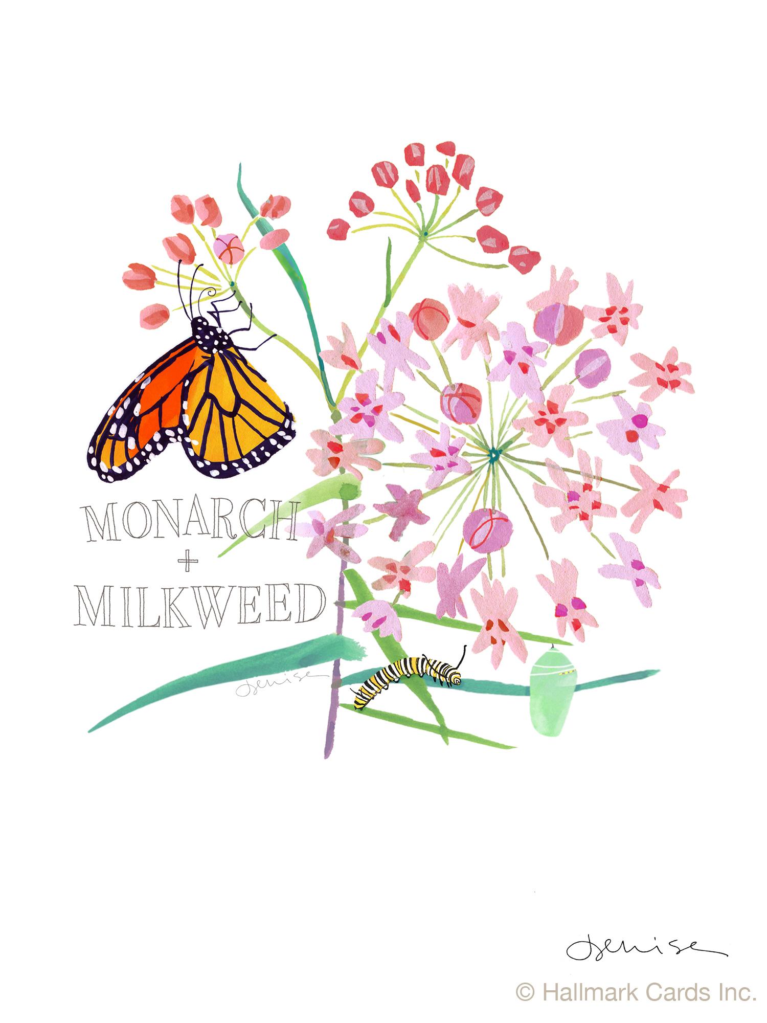 Monarch.Milkweed print.jpg