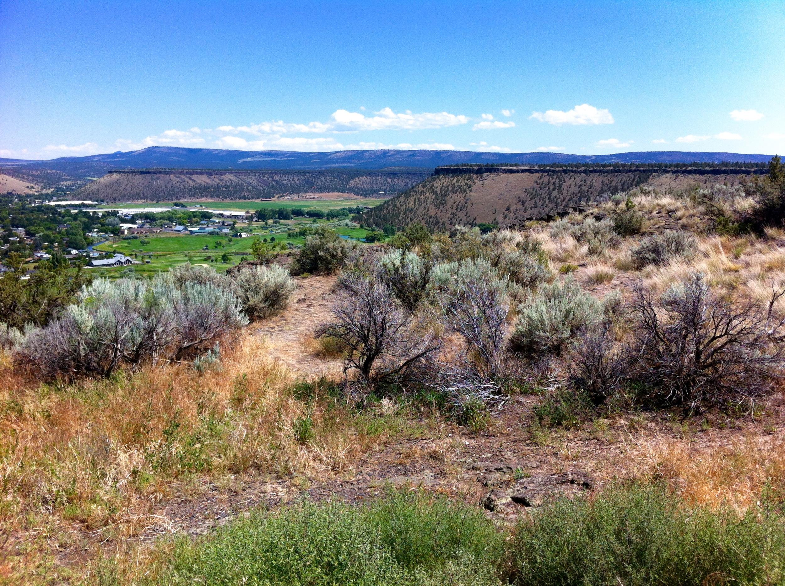 Prineville View