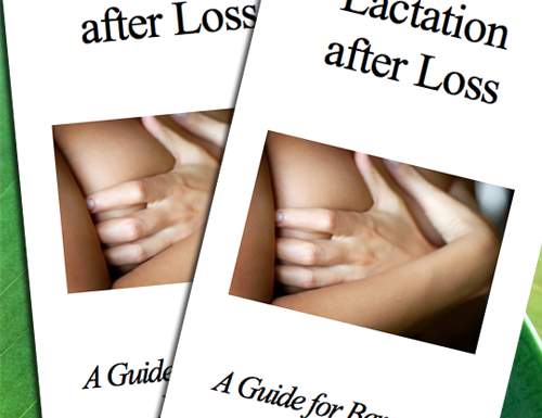 Lactation after Loss - Empty Arms is proud to offer our own, compassionately written