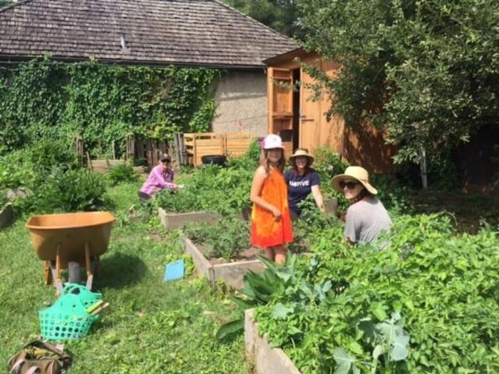 Gardening Summer Camp.jpeg