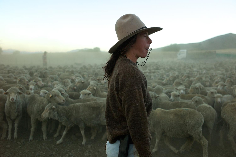 NZ_Sheep_Culture_ 004.jpg