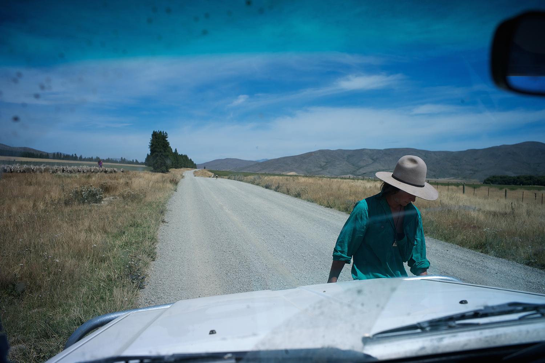 NZ_Sheep_Culture_ 007.jpg