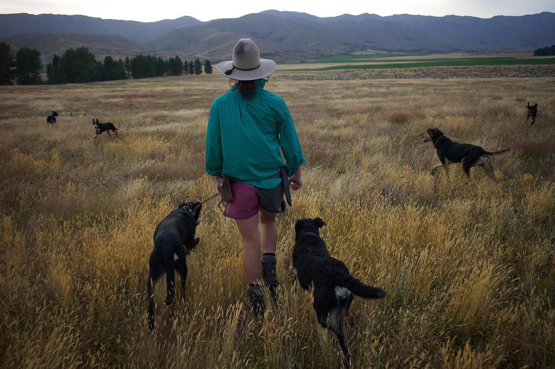 NZ_Sheep_Culture_ 023.jpg