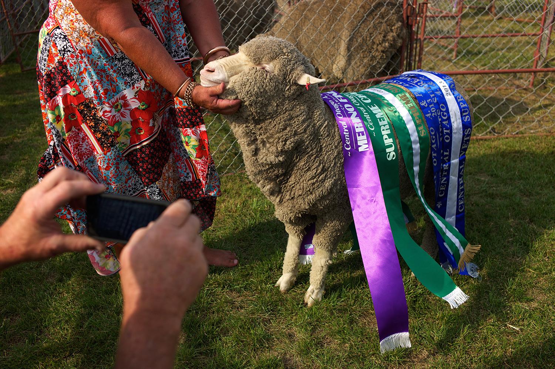 NZ_Sheep_Culture_ 037.jpg