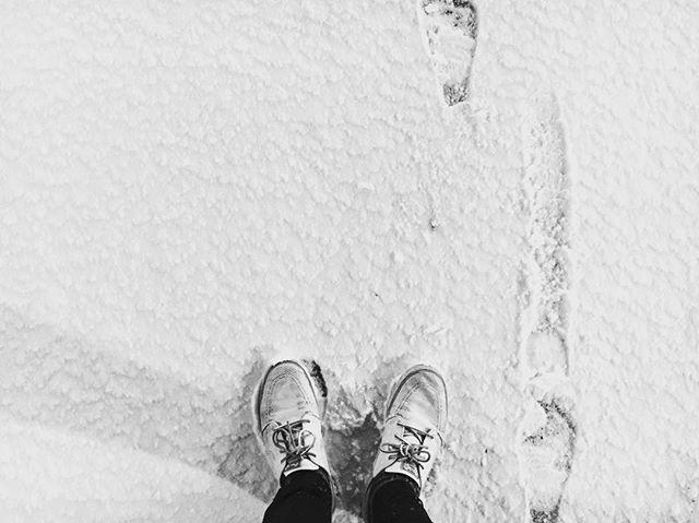 ❄️#hermanniturkki #folkmelske #snow #lumi #suomi #helsinki #finland #winter #december #white