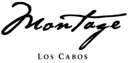 Montage Logo.jpg