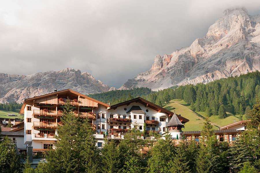 rosa alpina3.jpg