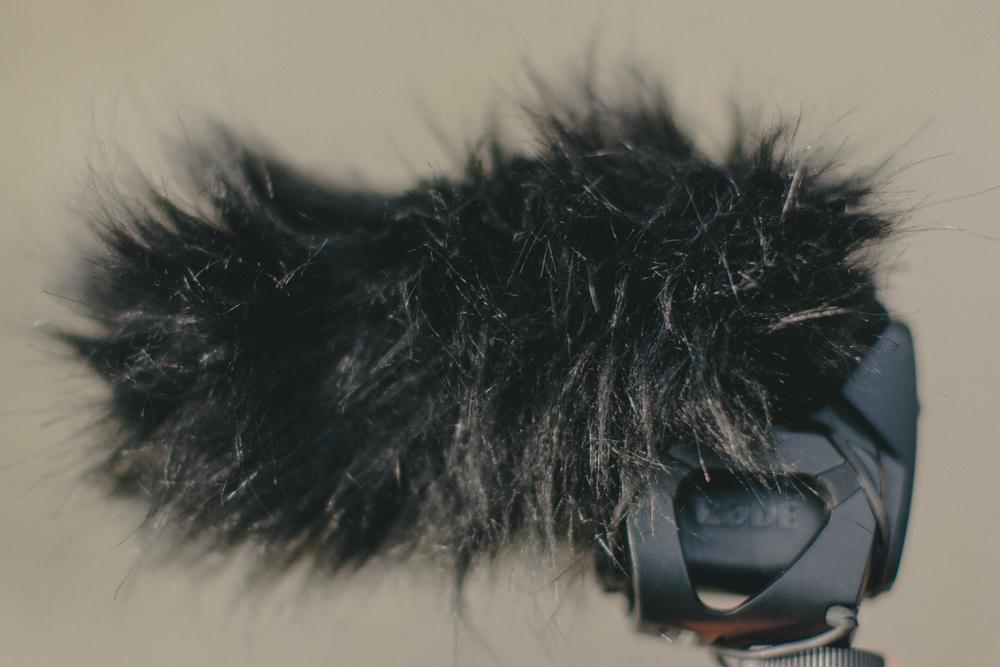 A  RODEVideoMic Pro covered with a  DeadCat VMP .