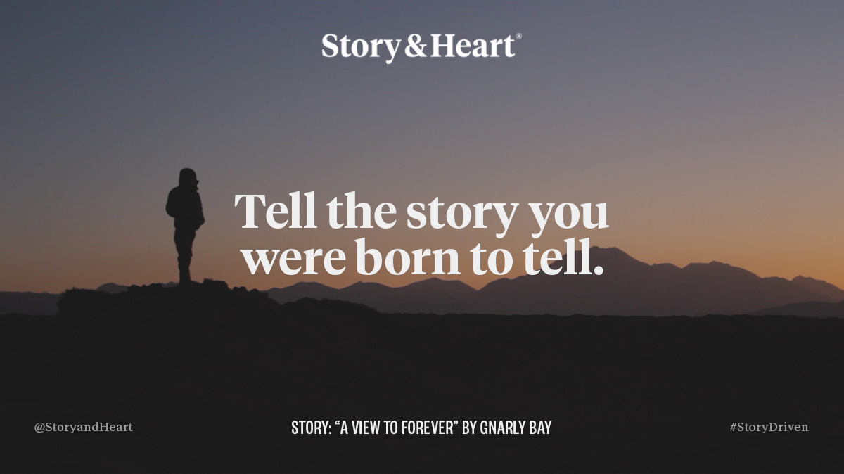 Story by  Gnarly Bay