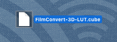 Once you export your FilmConvert LUT file, you can save it to an SD card and import it to your favorite camera or monitor. Cool, right?