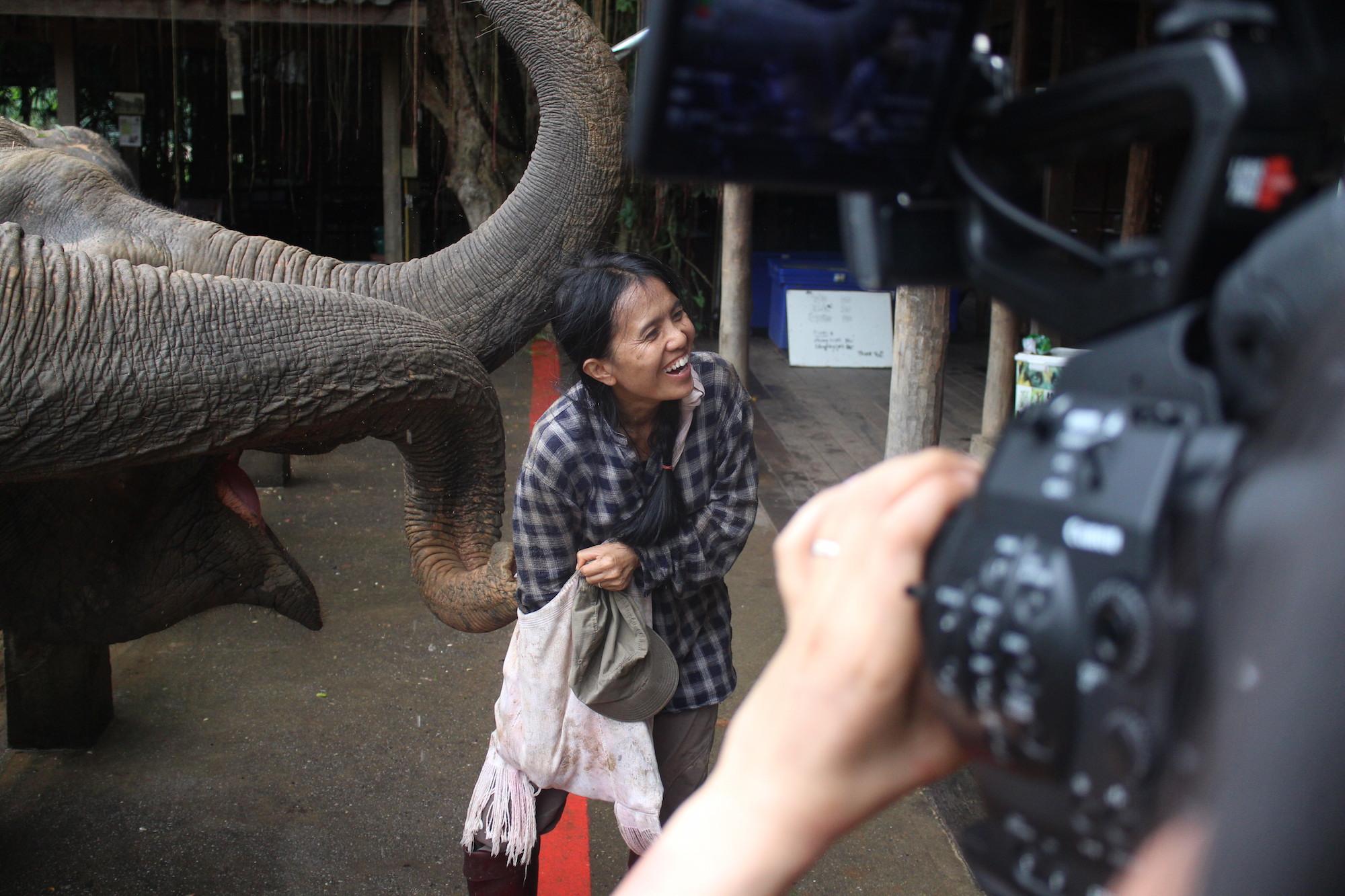 Lek, from the film  The Elephant Whisperer Of Chiang Mai
