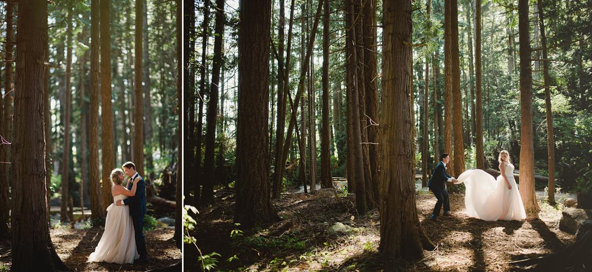 188金宝博线上平台森林
