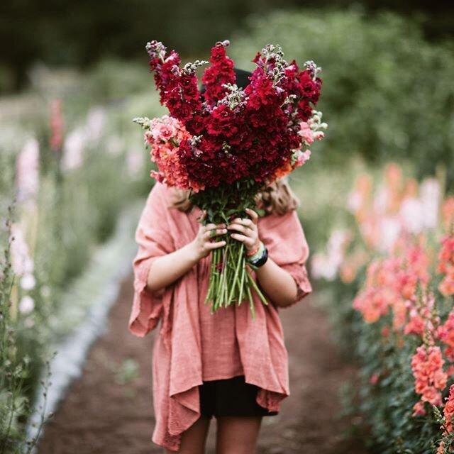 在这里幻想着春天,回忆在@shamrockfarm的美好时光,看看艾略特版本的这张照片