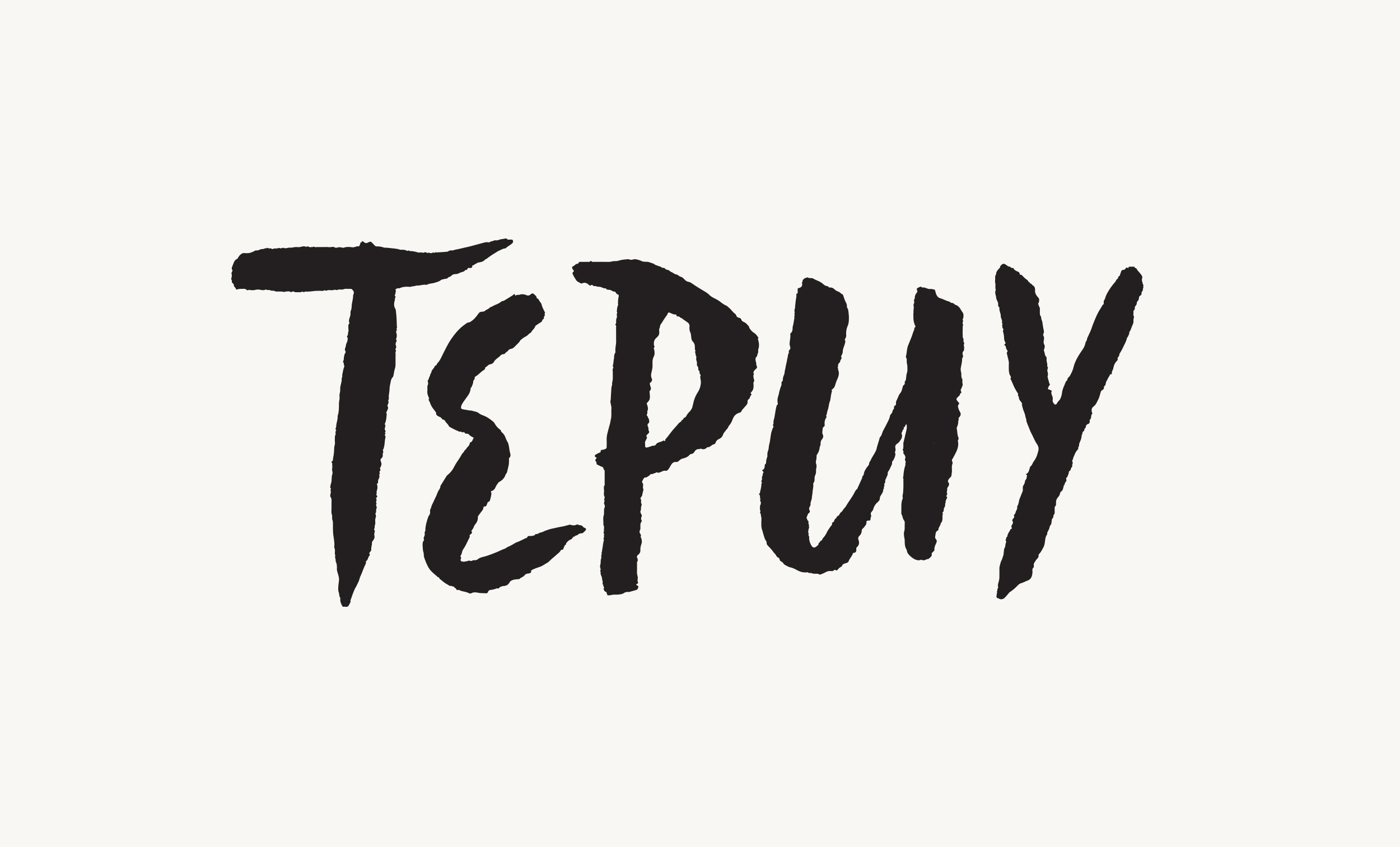 Branding for   Tepuy  , a series of pop-up dinners by Chef Adriana Urbina.