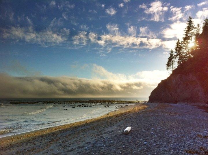 Beach on the Nootka Trail