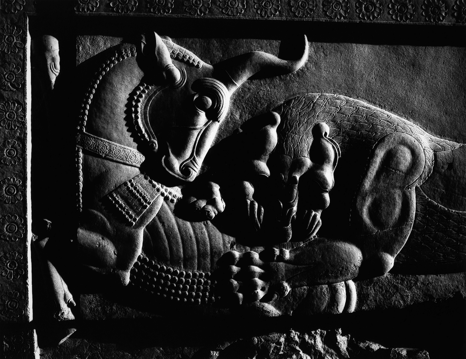 Lion and Bull, Persepolis